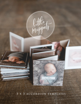 3x3 mini accordion templates, newborn